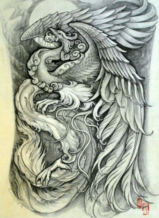 凤凰纹身手稿图片