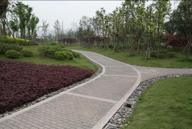 大學城生態公園