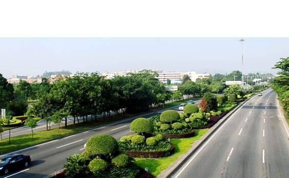 高速公路绿化