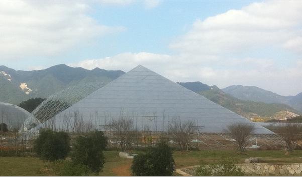 金字塔温室是模仿埃及金字塔结构设计的新型温室