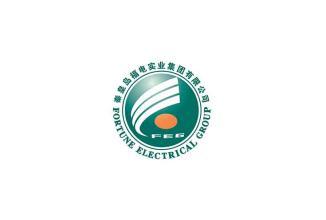 秦皇岛福电实业集团有限公司