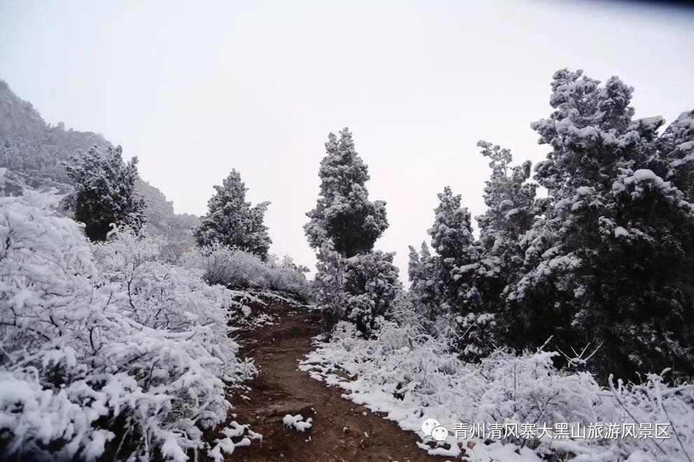 冬日雪景清风寨-景区相册-青州市清风寨大黑山风景区