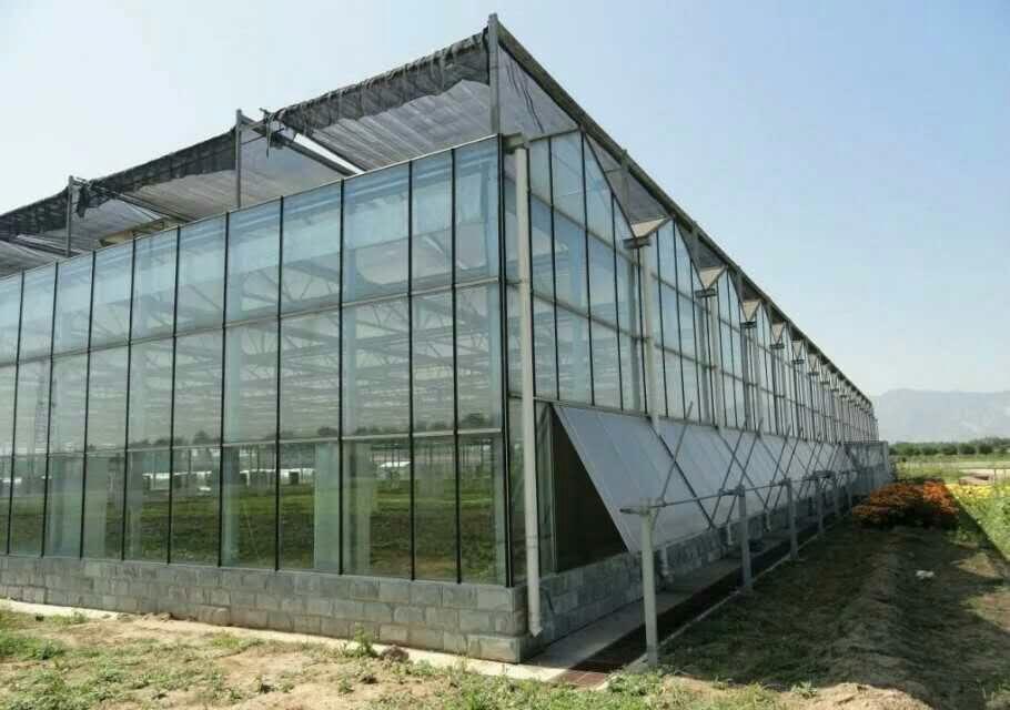寿光蔬菜大棚图片_寿光蔬菜大棚建设-寿光市昊德温室建设有限公司