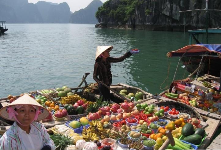 防城港,越南(河内,下龙湾,巡洲岛,吉婆岛)高速豪华客轮,动车